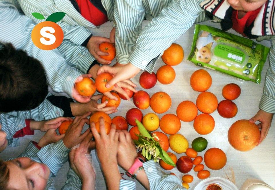 L'atelier de l'Orange
