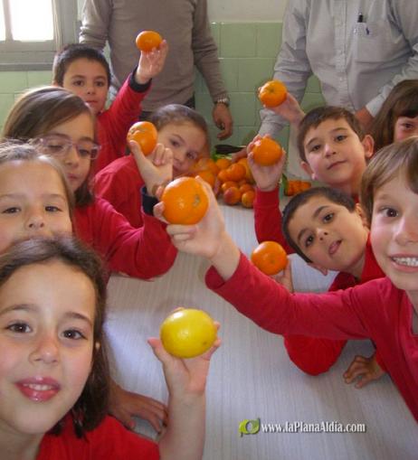 """Los sentidos de la naranja"" en La plana al dia"