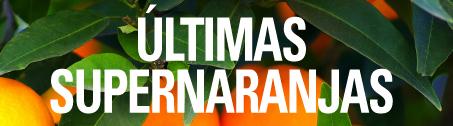 ULTIMA SEMANA DE LA TEMPORADA 2013/2014