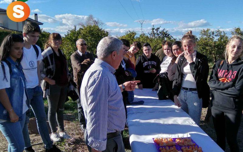Nous avons reçu la visite d'étudiants Erasmus de l'IES Jaume I