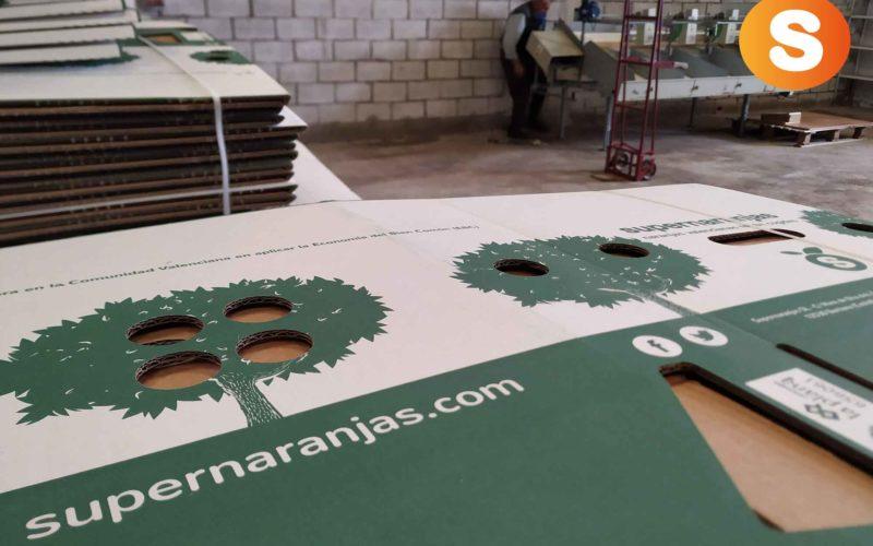 Inauguramos nuevas instalaciones para la Campaña 2018/2019
