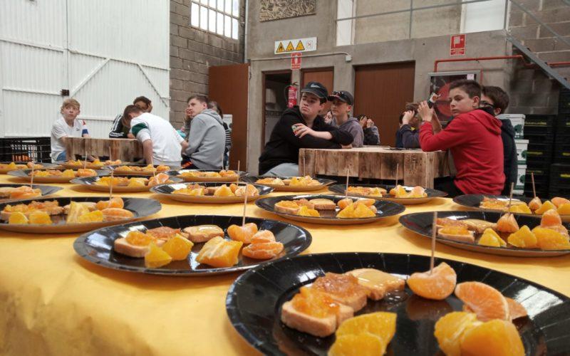 Visita en los huertos de #Naranjas del Collège St Jean Baptiste (Francia)