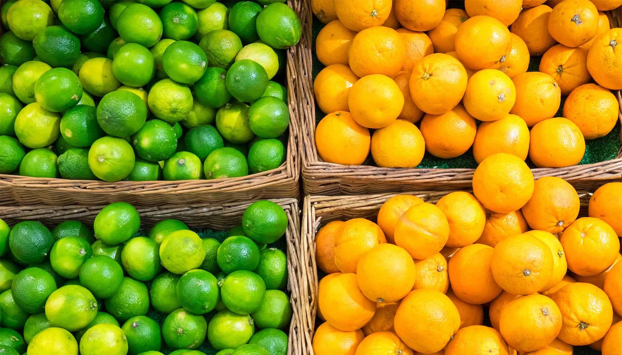 El Gobierno presenta 16 medidas para revitalizar el mercado de los cítricos