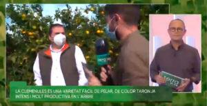 À Punt entrevista a Paco Usó Girona.